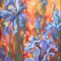 91.-Irises-1-24-x-48-inch